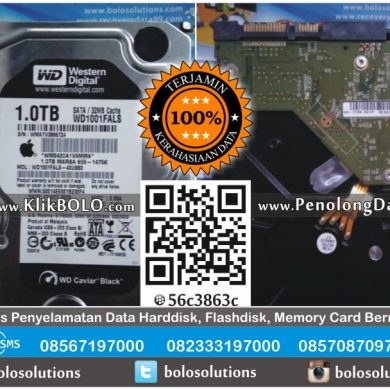 Recovery Data Harddisk WD 1TB Raymond Suharto Surabaya