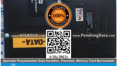 Recovery Data Harddisk Eksternal WD 1TB RS Brain & Spin Surabaya