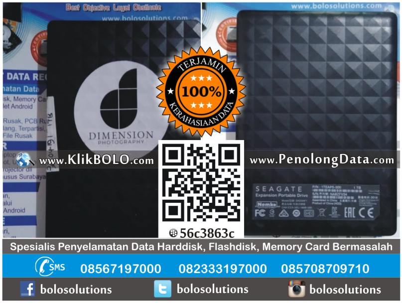 Recovery Data Harddisk Seagate