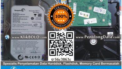 Recovery Data Internal Seagate   Harddisk Seagate 320GB Aris PT TEMPRINA Gresik