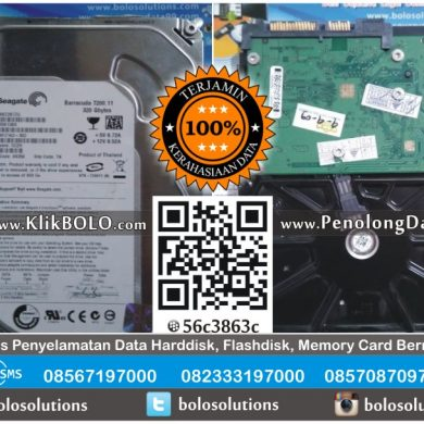 Recovery Data Internal Seagate | Harddisk Seagate 320GB Aris PT TEMPRINA Gresik