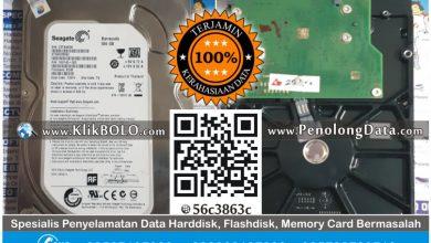 Recovery Data Seagate Barracuda | Harddisk Seagate 500GB SMA Dharma Wanita Surabaya