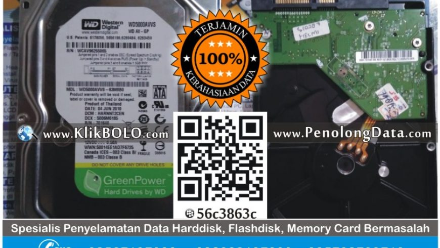 Recovery Data Seagate | Harddisk Seagate 500GB Helmi Krembangan