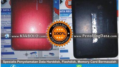 Recovery Data HDD WD Finish | Harddisk WD 500GB Yossi PT SAPTA INDRA SEJATI