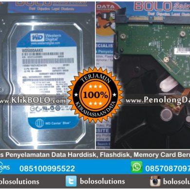 Recovery Data Harddisk Sukses | HD WD Blue 500GB Agus Wibowo Lamongan
