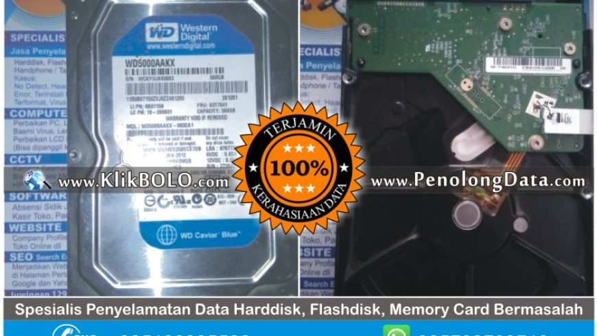 Recovery Data Harddisk Sukses | HD WD Blue 500GB Agus Wibowo Lamongan