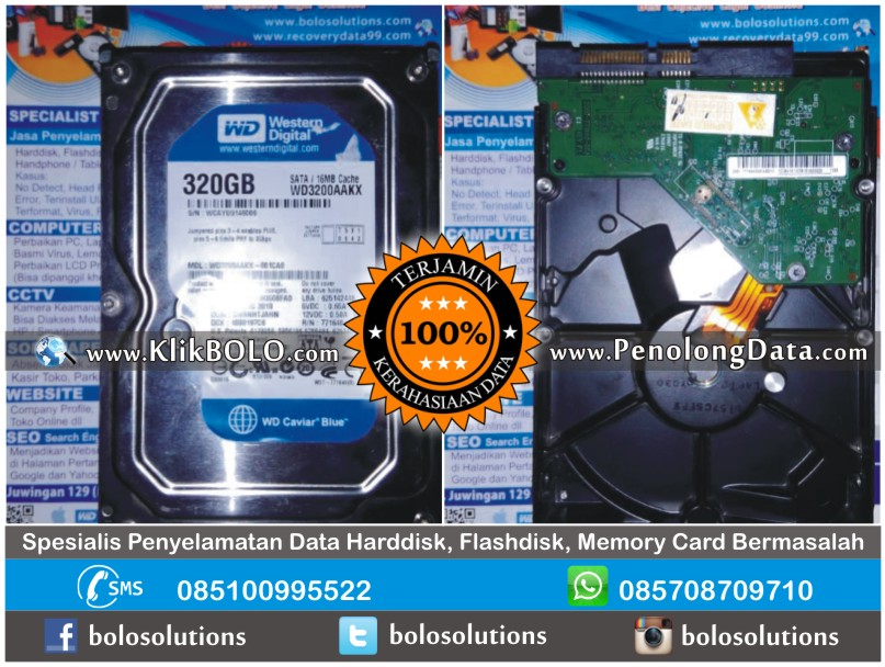 Recovery Data WD Sukses | Harddisk Internal WD 320GB Desi PT DAS