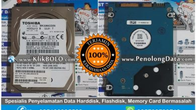 Recovery Data Selesai | Recovery Data Harddisk Toshiba 320GB Dwi Rendra Bank Jatim