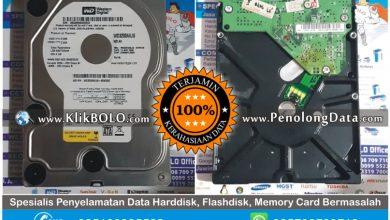 Recovery Data WD Berhasil | Harddisk WD 320GB Shrarath Babu Surabaya