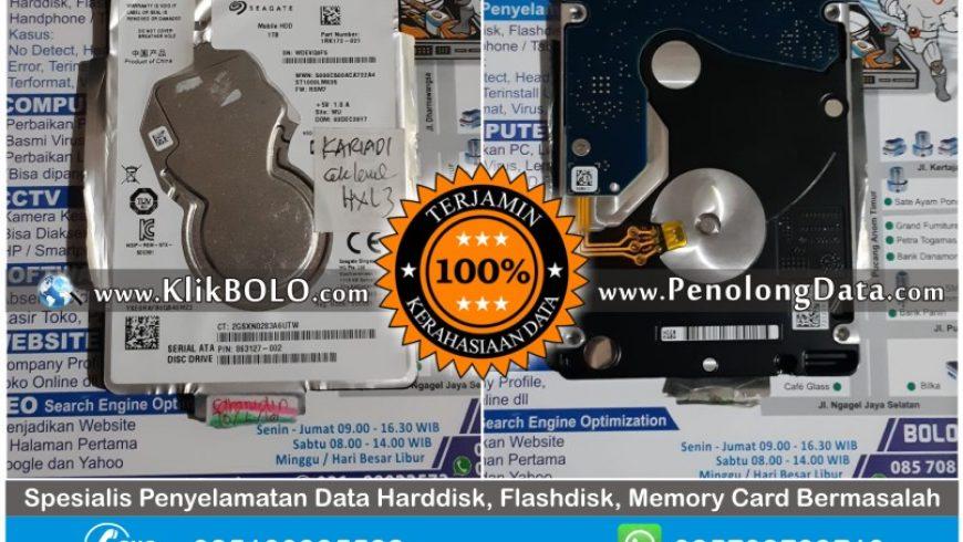 Recovery Data Seagate Berhasil | Harddisk Seagate 160GB Asrul Makasar