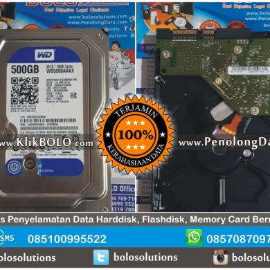Recovery Data WD Blue | Harddisk WD Blue 500GB James Darmo Surabaya