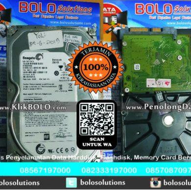 Recovery Data Seagate Finish | Harddisk Seagate 250 GB PT PANCARAN BANTALA SAKTI