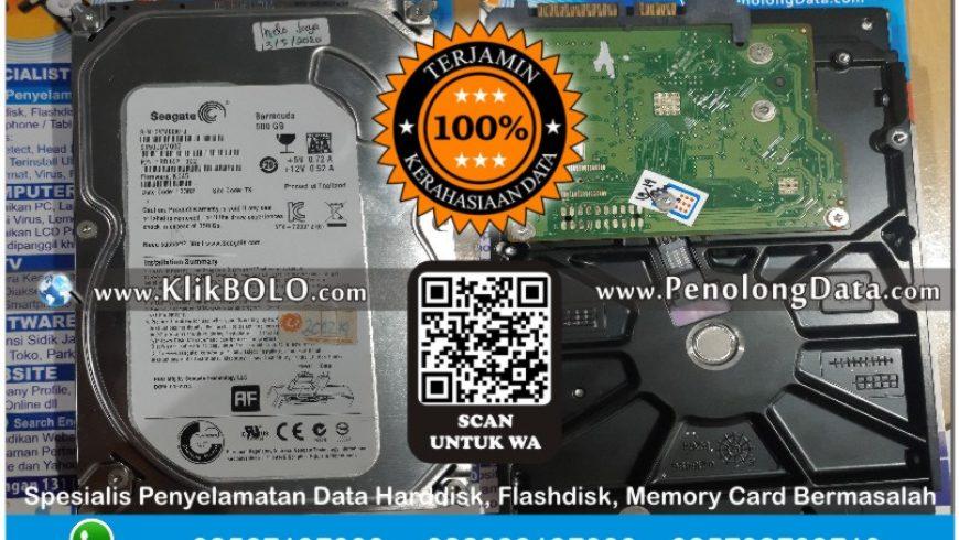 Recovery Data Seagate Finish | Harddisk Seagate 500 GB CV. Indo Jaya Makmur, Diana Kumalasari