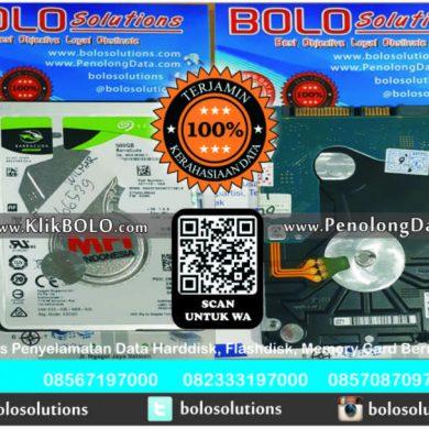 Recovery Data Seagate Selesai | Harddisk Seagate 500 GB PT Wilmar Nabati Indonesia
