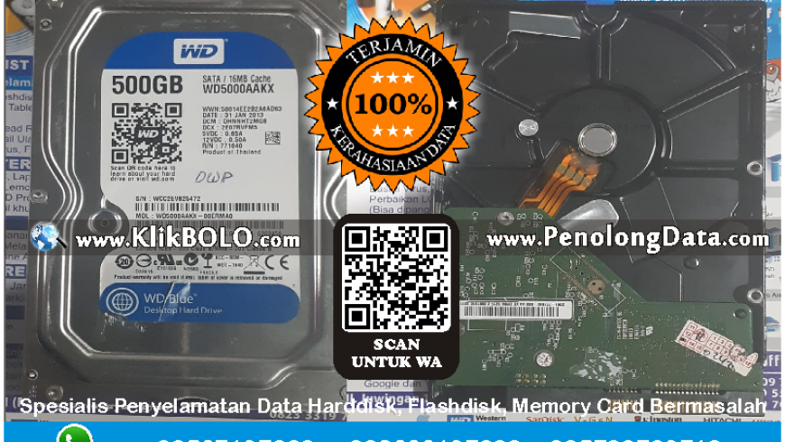 Recovery Data WD Selesai | Harddisk WD 500 GB Derris Wijaya PT Campina Ice Cream Industry