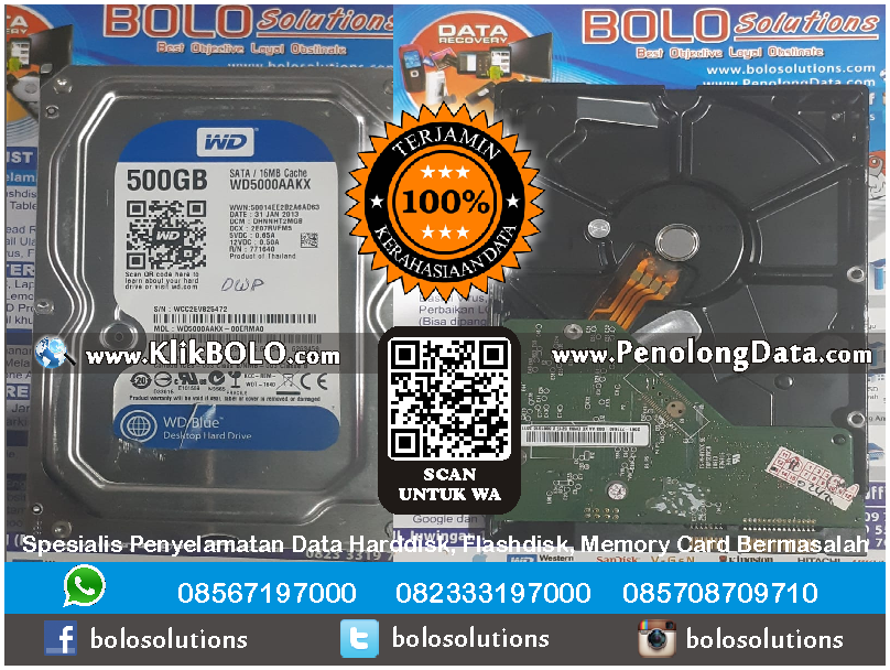 Recovery Data WD Selesai | Harddisk WD 500 GB Derris Wijaya PT Campina Ice Cream Industry
