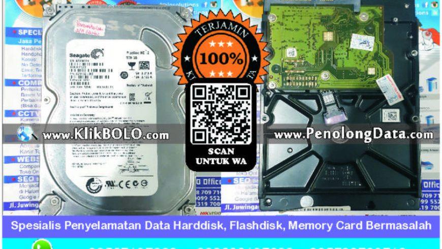 Recovery Data Seagate Pipeline Finish | Harddisk Seagate Pipeline 500 GB Paramita Lab, Aulia Medisina R