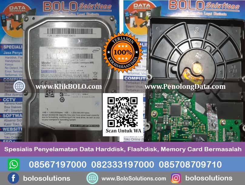 Recovery Data Harddisk Samsung Hobir